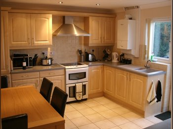 EasyRoommate UK - Dbl room in 3 bed semi Armthorpe. 1 other occupant - Armthorpe, Doncaster - £350