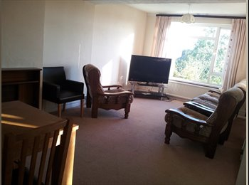 EasyRoommate UK - double room in quiet friendly house for profesion - Newhaven, Lewes - £500