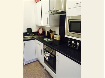 EasyRoommate UK - Large student studio flat all bills included - Plymouth, Plymouth - £620