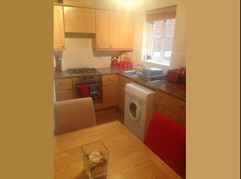 EasyRoommate UK - Furnished double room in lovely terrace house - Exeter, Exeter - £460