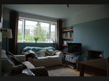 Comfy room in Kingston, opposite Bushy Park!