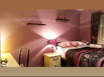EasyRoommate UK - Lovely room for an animal loving vegetarian - Leytonstone, London - £500