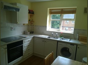 EasyRoommate UK - Single Room in Salford - Bills included - Seedley, Manchester - £380
