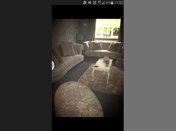 EasyRoommate UK - lovely room in baddeley green - Endon, Stoke-on-Trent - £400