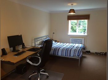 EasyRoommate UK - ATTRACTIVE single rooms in Folkestone - Folkestone, Folkestone - £280