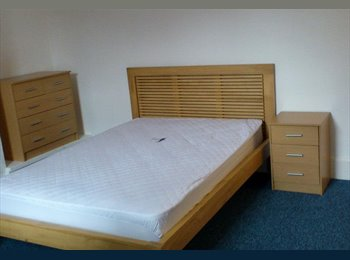 EasyRoommate UK - Large Double Bedroom to rent! - Exeter, Exeter - £455