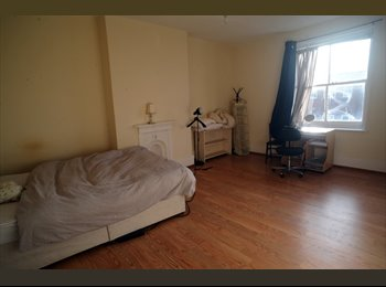 Large room in nice Brixton flat