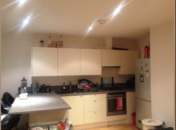 EasyRoommate UK - Double room in modern flat in Peckham - Peckham, London - £570
