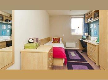 En-suite student room