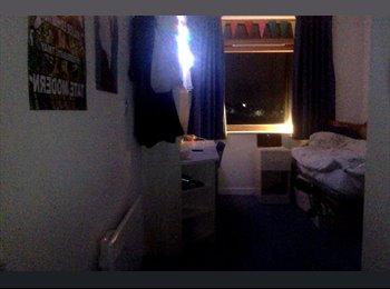 EasyRoommate UK - Room available in Paragon, Brentford - Brentford, London - £600