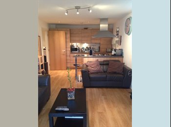 EasyRoommate UK - East london apartment with own bedroom - Chingford, London - £650