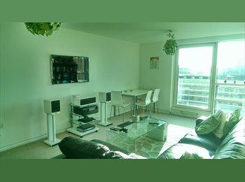 EasyRoommate UK - Bright double room in modern riverside flat - South Lambeth, London - £800