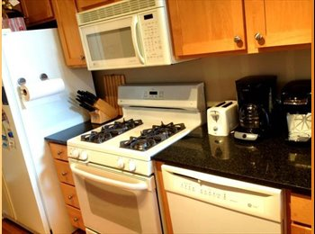 Room for Rent in Beautiful Lakeview Apartment!