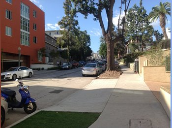 EasyRoommate US - Shared or private room available in Westwood! - Westwood, Los Angeles - $850