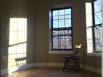 Rooms open in Bed Stuy, Brownstone block&tree line