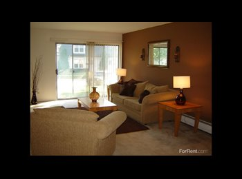 EasyRoommate US - A spacious 1 bedroom apartment available for 700/M - Milwaukee Suburbs North, Milwaukee Area - $700