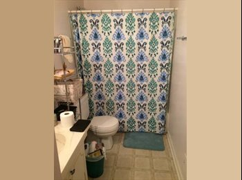 EasyRoommate US - Looking for a Roommate - Columbia, Columbia - $325