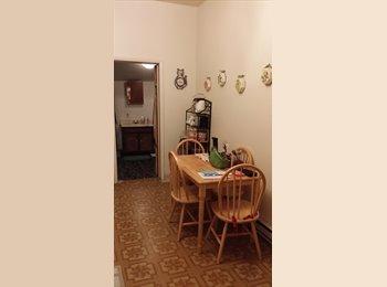 EasyRoommate US - 1 bedroom available immediately - Eastwood, Syracuse - $400