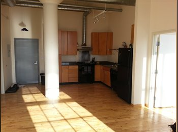EasyRoommate US - Large 2BR loft with morning sun In Franklin Square - Franklin Square, Syracuse - $700