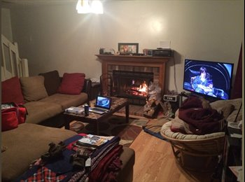 EasyRoommate US - Great House with Three Young Professionals! - Lynnhaven, Virginia Beach - $500