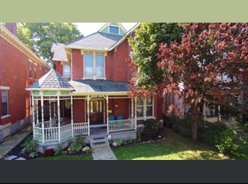 EasyRoommate US -  5br - Short North room with Young Professionals ( - Central, Columbus Area - $700