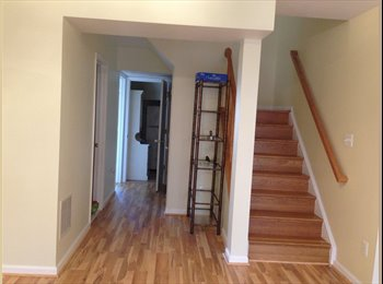 EasyRoommate US - Nice Basemet For Rent in South Riding VA - Arlington, Arlington - $1000