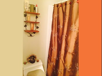 EasyRoommate US - Room for rent in spacious apartment  - Northwest Central, Columbus Area - $500