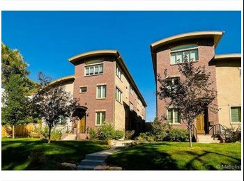 Brand New Townhome, Room for rent in Cherry Creek
