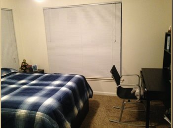 EasyRoommate US - Room to let - Norman, Norman - $469