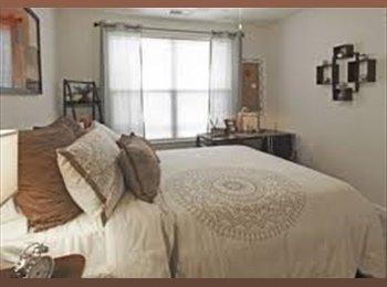EasyRoommate US - 1 Bedroom Apartment for rent -relet/sublet - Norfolk, Norfolk - $725