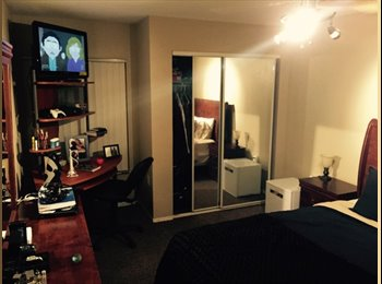 EasyRoommate US - Boardwalk at  Morris Bridge Upgraded Room - North Tampa, Tampa - $535