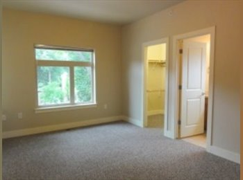 Beautiful townhouse less than a mile from campus