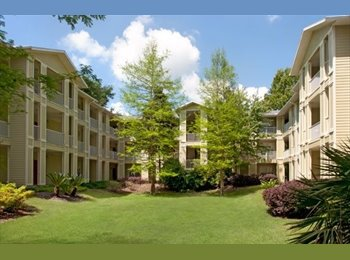 EasyRoommate US - $494 2/2 Room Available Move In Ready -All Inculvise (LUX 13 Apartments) - Gainesville, Gainesville - $494