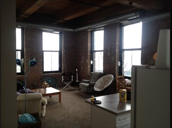 EasyRoommate US - Beautiful South Loop Apartment 1 room av. 6 months - Chicago, Chicago - $730