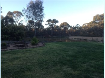 EasyRoommate AU - 1 furnished and 1 not furnished room. - Junortoun, Bendigo - $180