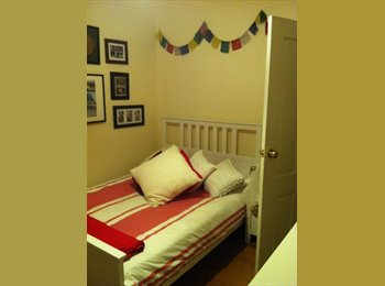 EasyRoommate AU - Sunny room with floorboards in Neutral Bay - Neutral Bay, Sydney - $250