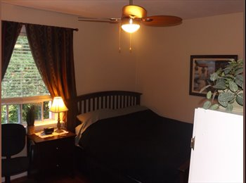 A Bright, Beautiful & Fully Furnished Room