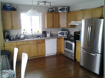 Seeking roommates for my home