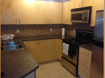 Shared Furnished Downtown apartment