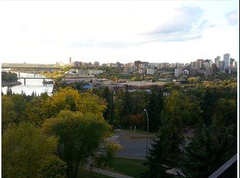 Swanky Riverfront Apartment