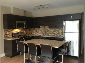 EasyRoommate CA - Summer sublet 248 Nelson Street - Sandy Hill and the Byward Market, Ottawa - $733