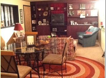 Fully furnished basement with separate bedroom
