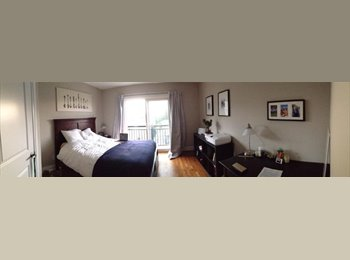 EasyRoommate CA - Newly built summer sublet near Billings Bridge - The Glebe, Ottawa - $550
