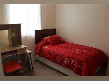CompartoDepto CL - Arriendo habitacion - Viña del Mar, Valparaíso - CH$*