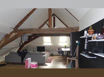 Mooie ruime kamers in centrum Mechelen