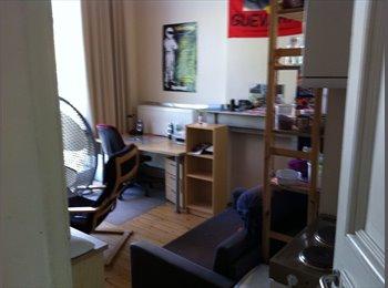 Zeer ruime kamer hoek Dekenstraat/Geldenaaksevest