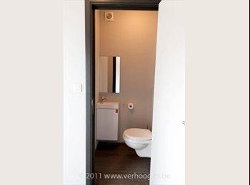 Kamer in zeer vernieuwd appartement te huur