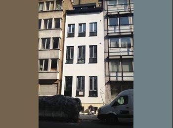 Studentenkamer Antwerpen centrum vanaf 01.07.2015
