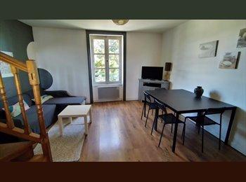 1 chambre en colocation appartement T4 duplex