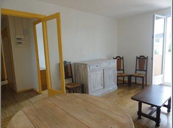 colocation 3 personnes dans appartement